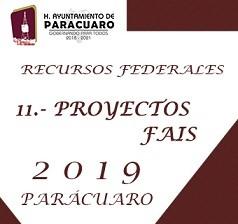 11.- PROYECTOS FAIS