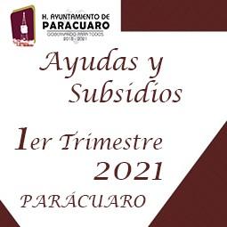 1er Trimestre 2021